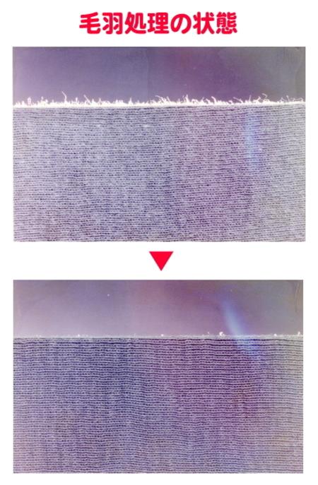 繊維の毛羽分解 セルラーゼ(繊維分解酵素)+ph調整剤 お手軽セット